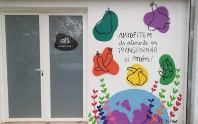 Pinzells i pintura per a l'acció social